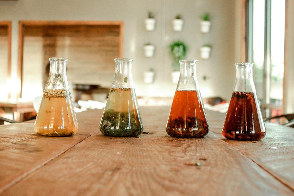 Tea extract for seed dormancy